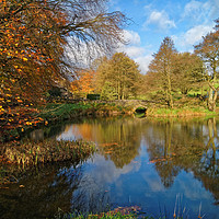Buy canvas prints of Bentley Brook Pond In Autumn                     by Darren Galpin