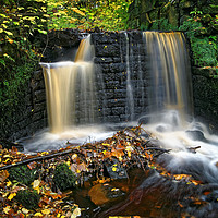 Buy canvas prints of Upper Cut Wheel,Rivelin                       by Darren Galpin