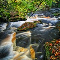Buy canvas prints of  River Rivelin                       by Darren Galpin
