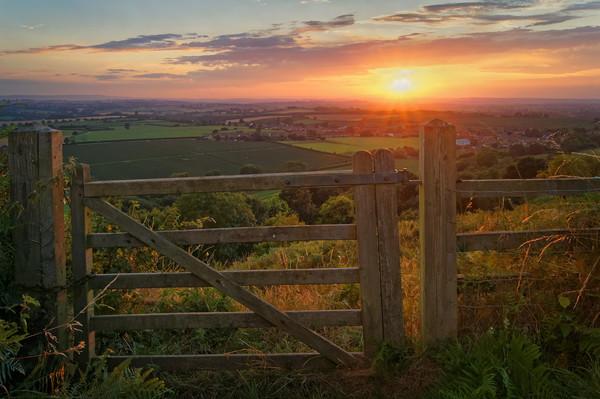 Ham Hill Sunset                        Canvas print by Darren Galpin