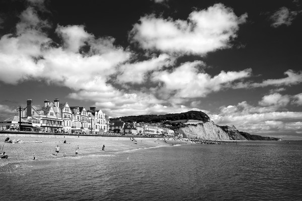 Sidmouth Seafront & Coastline                     Canvas print by Darren Galpin