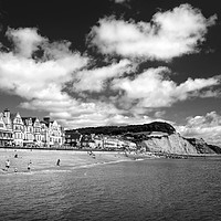 Buy canvas prints of Sidmouth Seafront & Coastline                     by Darren Galpin