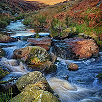Buy canvas prints of Burbage Brook during Autumn                      by Darren Galpin
