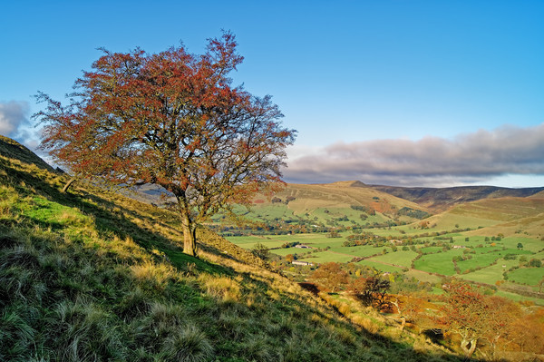 Vale of Edale from Backtor Nook                    Canvas print by Darren Galpin