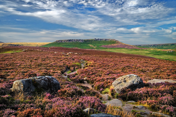 Approach to Higger Tor                       Canvas print by Darren Galpin
