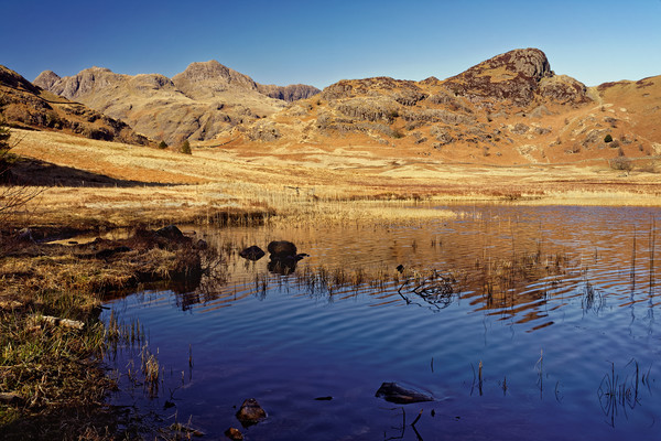 Blea Tarn and Langdale Pikes                       Canvas print by Darren Galpin