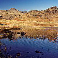 Buy canvas prints of Blea Tarn and Langdale Pikes                       by Darren Galpin