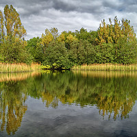 Buy canvas prints of Walton Colliery Nature Park                   by Darren Galpin