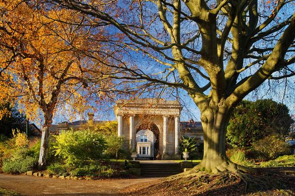 Sheffield Botanical Gardens in Autumn              Framed Mounted Print by Darren Galpin
