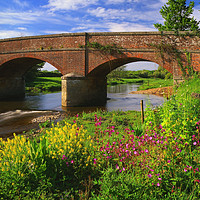Buy canvas prints of Gosford Bridge & the River Otter by Darren Galpin