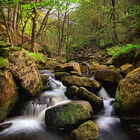 Buy canvas prints of Spring in Padley Gorge by Darren Galpin