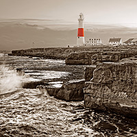 Buy canvas prints of Portland Lighthouse at Sunset                      by Darren Galpin