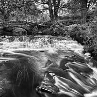 Buy canvas prints of Rivelin Packhorse Bridge & Weir                    by Darren Galpin