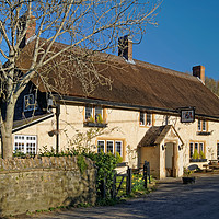 Buy canvas prints of The Ilchester Arms, Symondsbury                    by Darren Galpin