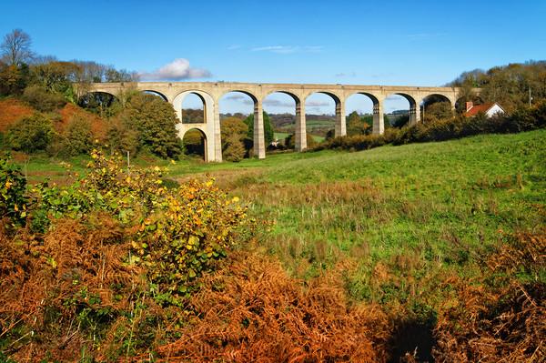 Cannington Viaduct, Uplyme                       Canvas Print by Darren Galpin