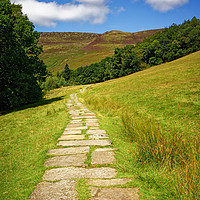 Buy canvas prints of   Path to Kinder Scout                             by Darren Galpin