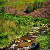 Buy canvas prints of  Grindsbrook and Upper Tor                         by Darren Galpin