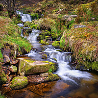 Buy canvas prints of Blackden Brook   by Darren Galpin