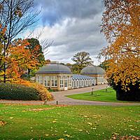 Buy canvas prints of Sheffield Botanical Gardens in Autumn              by Darren Galpin