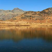 Buy canvas prints of Blea Tarn Panorama by Darren Galpin