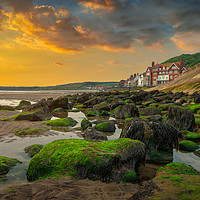 Buy canvas prints of Seaweed on the Rocks by Darren Ball