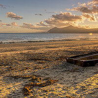 Buy canvas prints of Beached by Darren Ball