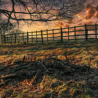 Buy canvas prints of Red Sky at Night by Darren Ball