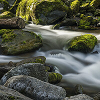Buy canvas prints of Down by the Riverside by Darren Ball