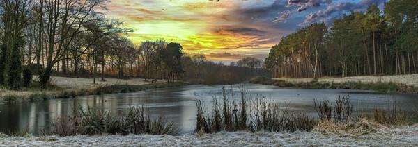 Winter Sunrise Canvas Print by Darren Ball