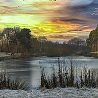 Buy canvas prints of Winter Sunrise by Darren Ball