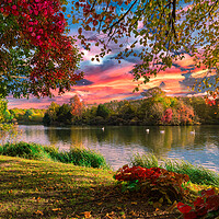 Buy canvas prints of Autumn Lakeside by Darren Ball