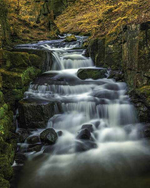 Lumsdale in Autumn Canvas Print by Darren Ball