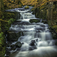 Buy canvas prints of Lumsdale in Autumn by Darren Ball