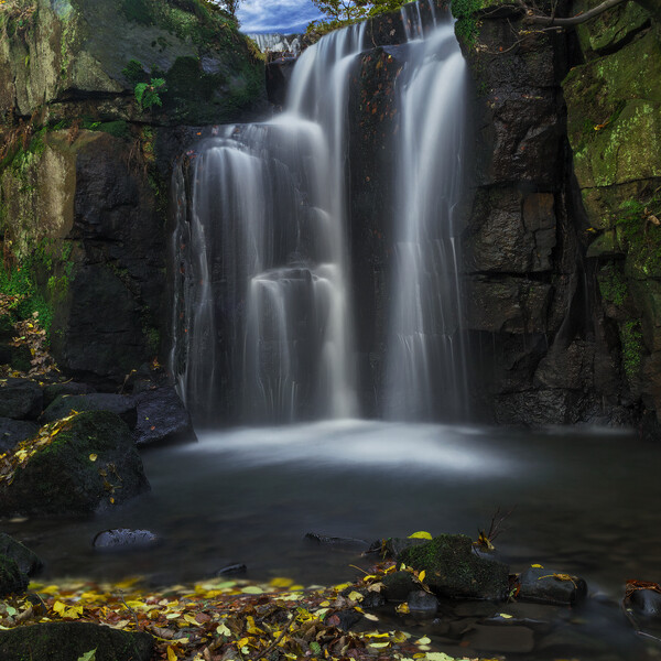 Falls in the Fall Canvas Print by Darren Ball