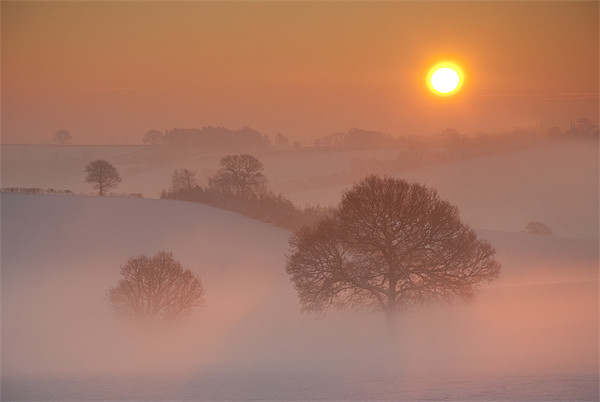 Winter Sunrise Canvas print by Tracey Whitefoot