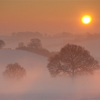Buy canvas prints of Winter Sunrise by Tracey Whitefoot