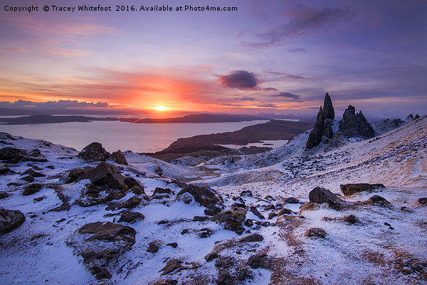 Winter at the Storr  Canvas print by Tracey Whitefoot