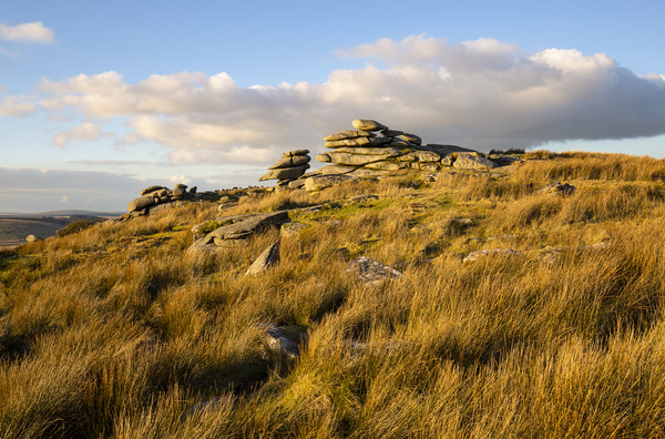 Stowes Hill Bodmin Moor Canvas print by CHRIS BARNARD