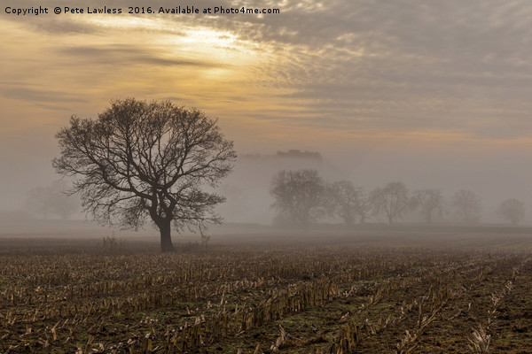 Beeston Castle in the mist   Canvas print by Pete Lawless