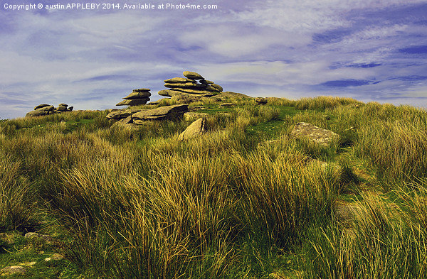 CHEESEWRING BODMIN MOOR CORNWALL Canvas print by austin APPLEBY