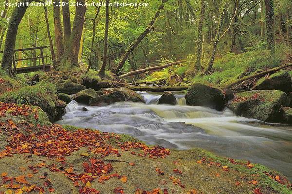 River Fowey at Golitha Falls Canvas print by austin APPLEBY