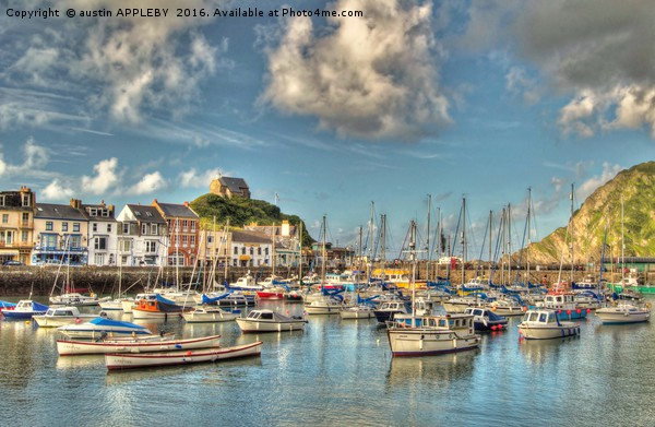 Ilfracombe Harbour North Devon Canvas print by austin APPLEBY