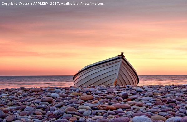 Budleigh Boat On The Pebbles Canvas print by austin APPLEBY