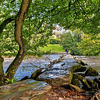 Buy canvas prints of Tarr Steps Exmoor National Park by austin APPLEBY