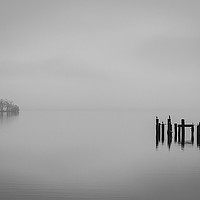 Buy canvas prints of Mist on the Loch by Alex Millar