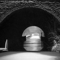 Buy canvas prints of Newbold Tunnel Black and White by Avril Harris