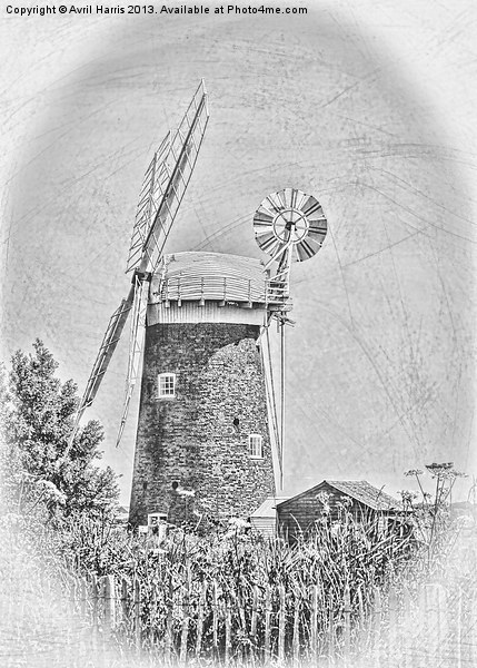 Horsey windpump black and white Canvas print by Avril Harris