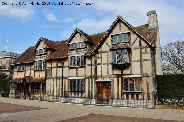 William Shakespeare's Birthplace Canvas print by Avril Harris