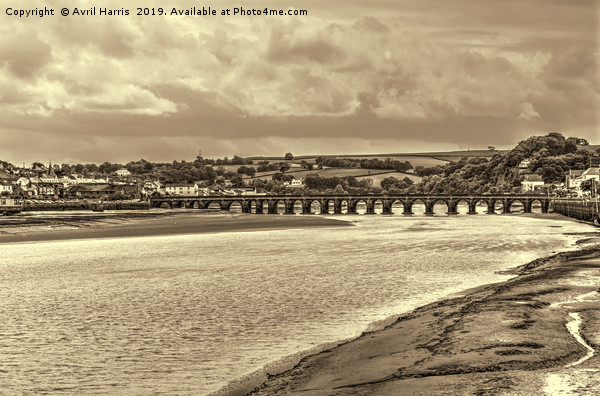 Bideford Long Bridge Devon Sepia Canvas print by Avril Harris
