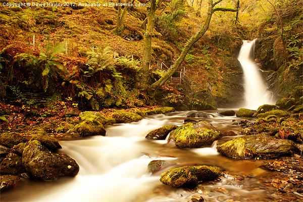 Autumn Waterfall Canvas Print by David Haylor
